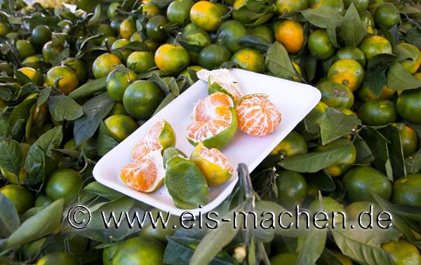 So sehen unbehandelte, reife Mandarinen aus. (Bild: www.eis-machen.de / Erich Eggimann)
